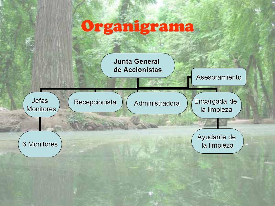 Organigrama Junta General de Accionistas JefasMonitores 6 Monitores Encargada de la limpieza Ayudante de la limpieza AdministradoraRecepcionista Aseso