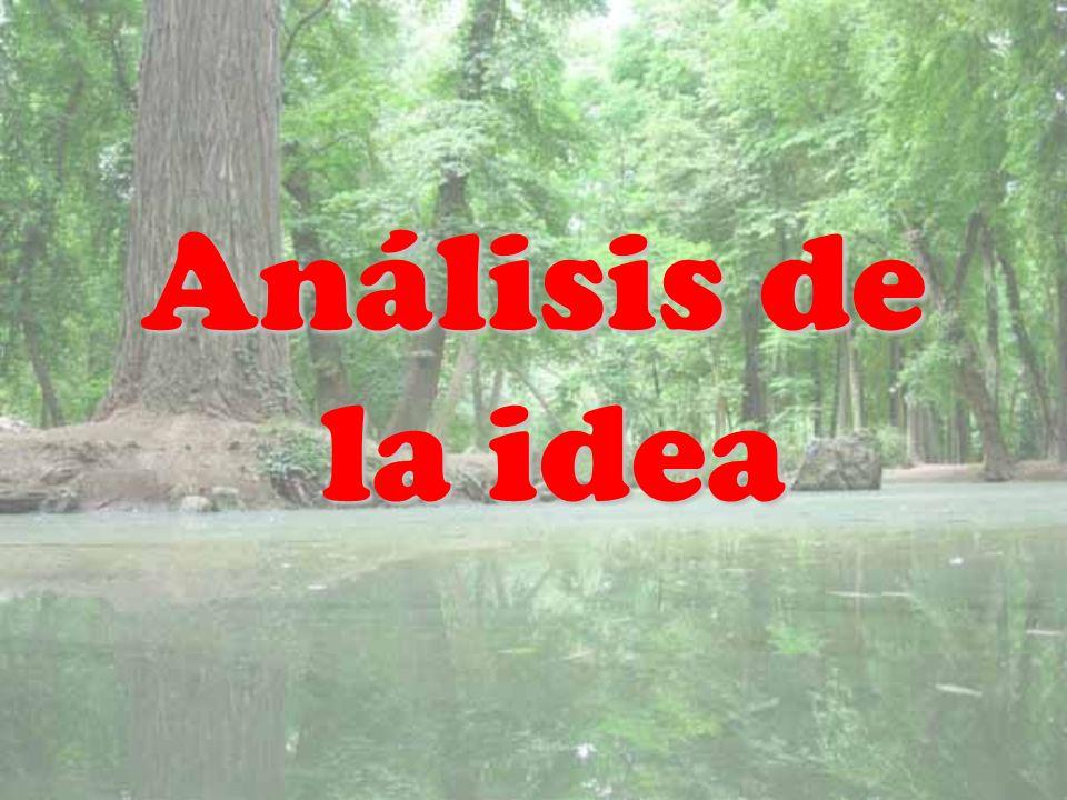 Análisis de la idea