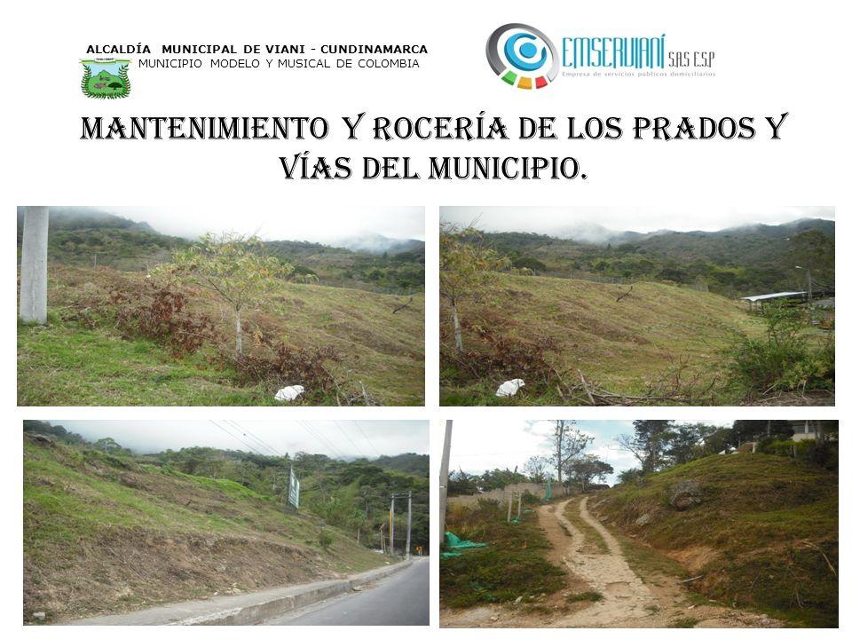 Mantenimiento y rocería de los prados y vías del municipio. ALCALDÍA MUNICIPAL DE VIANI - CUNDINAMARCA MUNICIPIO MODELO Y MUSICAL DE COLOMBIA