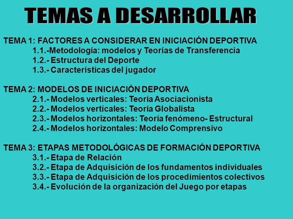 MINIDEPORTE ANÁLISIS GENERAL LAS REGLAS FORMALES-ESTRUCTURALES TERRENO DE JUEGO.