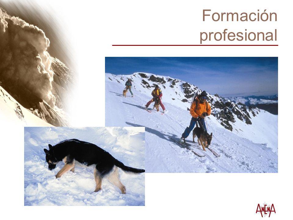 Formación profesional Guía-perro de aludes