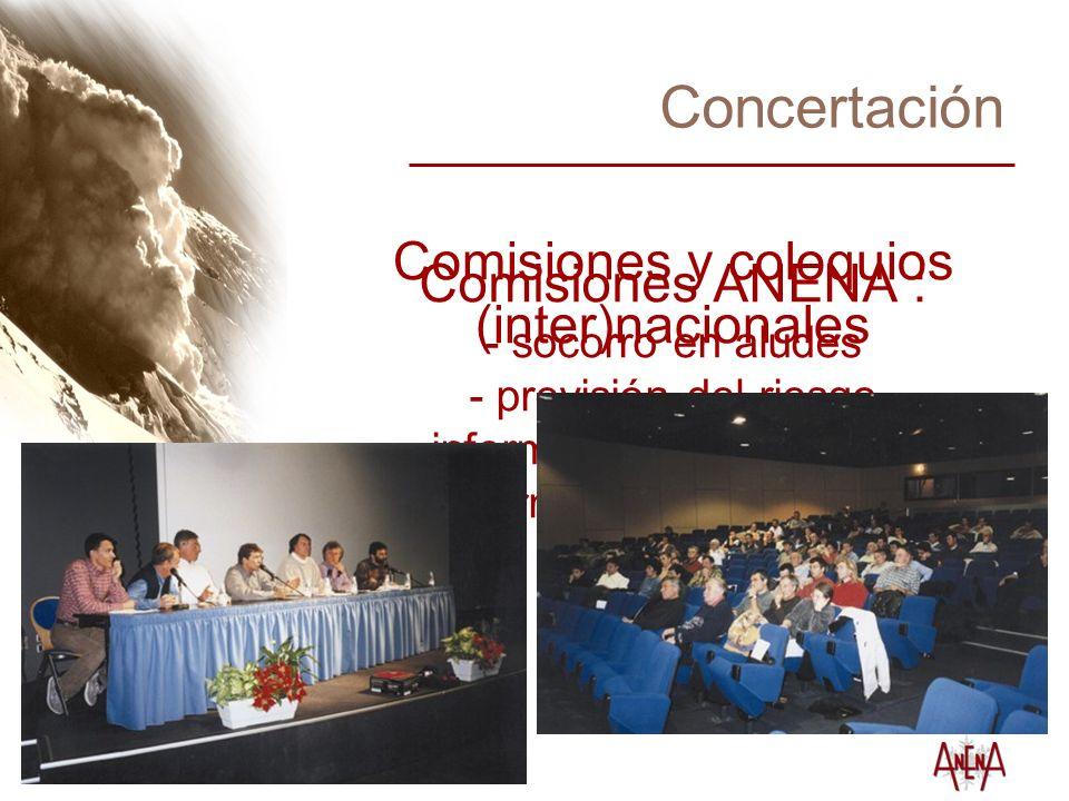 Concertación Comisiones ANENA : - socorro en aludes - previsión del riesgo - información a los usuarios - formación profesional - etc.