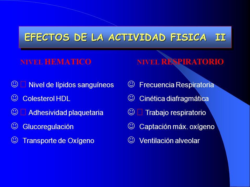 EFECTOS DE LA ACTIVIDAD FISICA II EFECTOS DE LA ACTIVIDAD FISICA II NIVEL HEMATICO Nivel de lípidos sanguíneos Colesterol HDL Adhesividad plaquetaria Glucoregulación Transporte de Oxígeno NIVEL RESPIRATORIO Frecuencia Respiratoria Cinética diafragmática Trabajo respiratorio Captación máx.