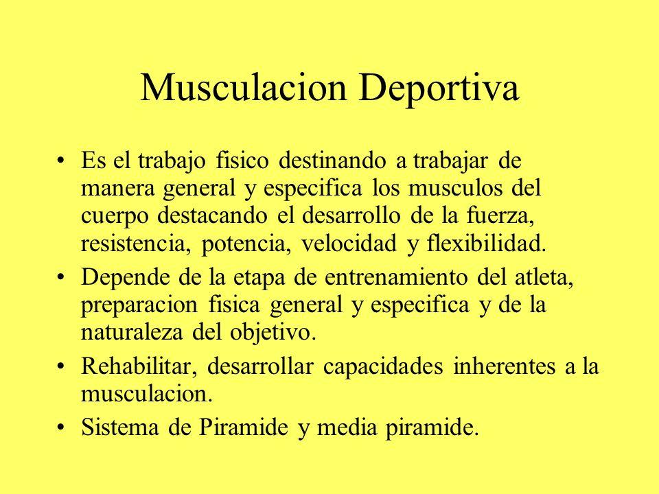 Musculacion Deportiva Es el trabajo fisico destinando a trabajar de manera general y especifica los musculos del cuerpo destacando el desarrollo de la