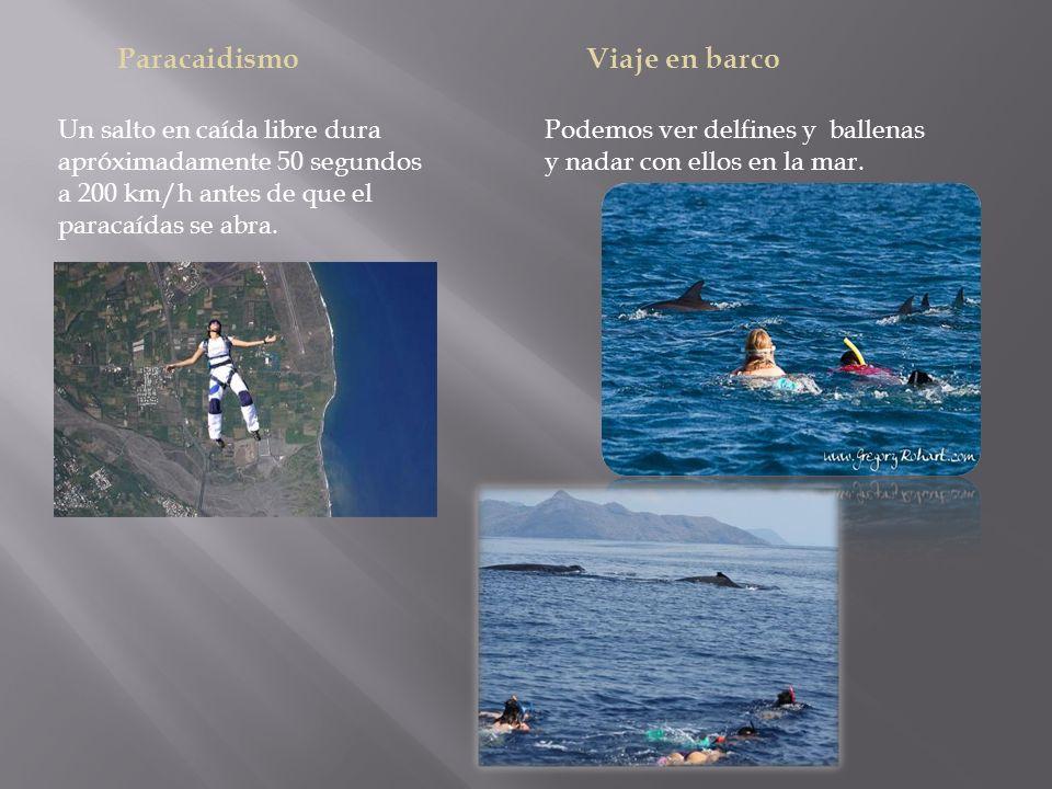 Paracaidismo Un salto en caída libre dura apróximadamente 50 segundos a 200 km/h antes de que el paracaídas se abra.