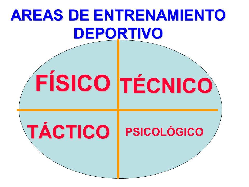 RENDIMIENTO EN EL ENTRENAMIENTO DEPORTISTA FACTORES FISICOS FACTORES PSICOLÓGICOS FACTORES PSICOSOMÁTICOS FACTORES AMBIENTALES RENDIMIENTO EN LA COMPE