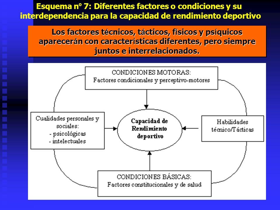 Esquema n º 7: Diferentes factores o condiciones y su interdependencia para la capacidad de rendimiento deportivo Los factores t é cnicos, t á cticos,