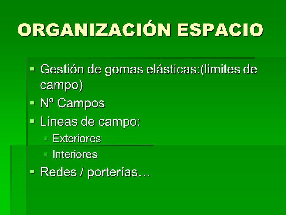 ORGANIZACIÓN ESPACIO Gestión de gomas elásticas:(limites de campo) Gestión de gomas elásticas:(limites de campo) Nº Campos Nº Campos Lineas de campo: