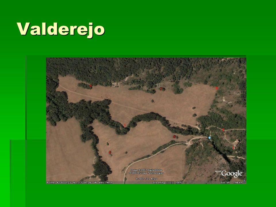 Valderejo