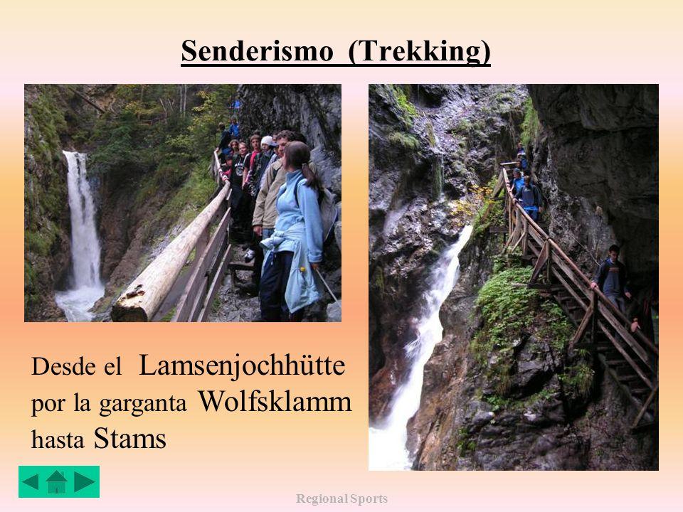 Regional Sports Senderismo (Trekking) Desde el Lamsenjochhütte por la garganta Wolfsklamm hasta Stams