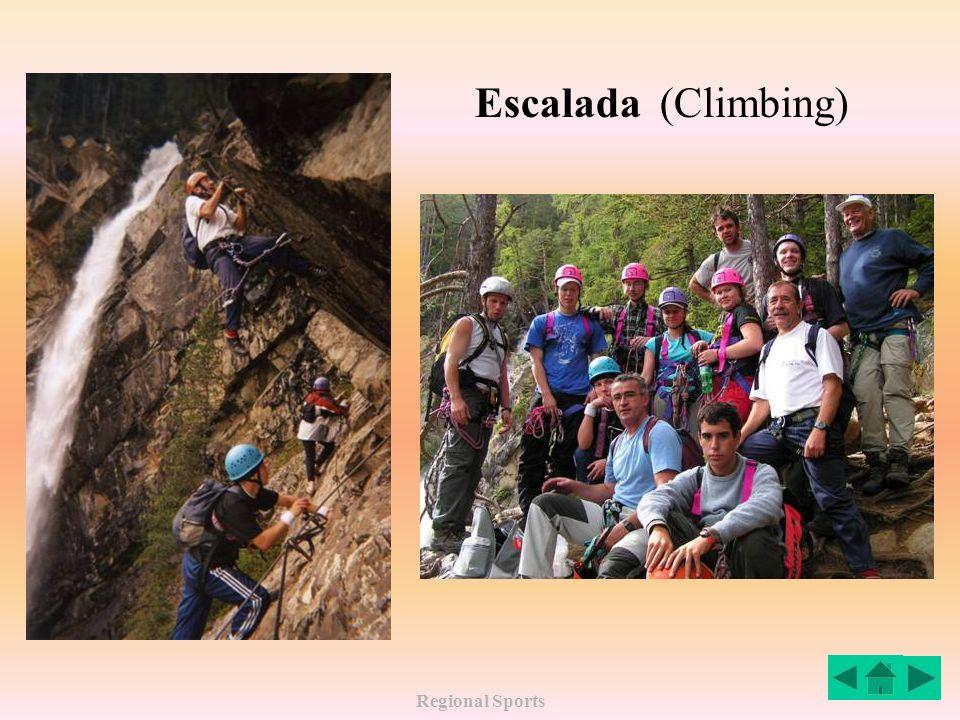 Regional Sports Escalada (Climbing)