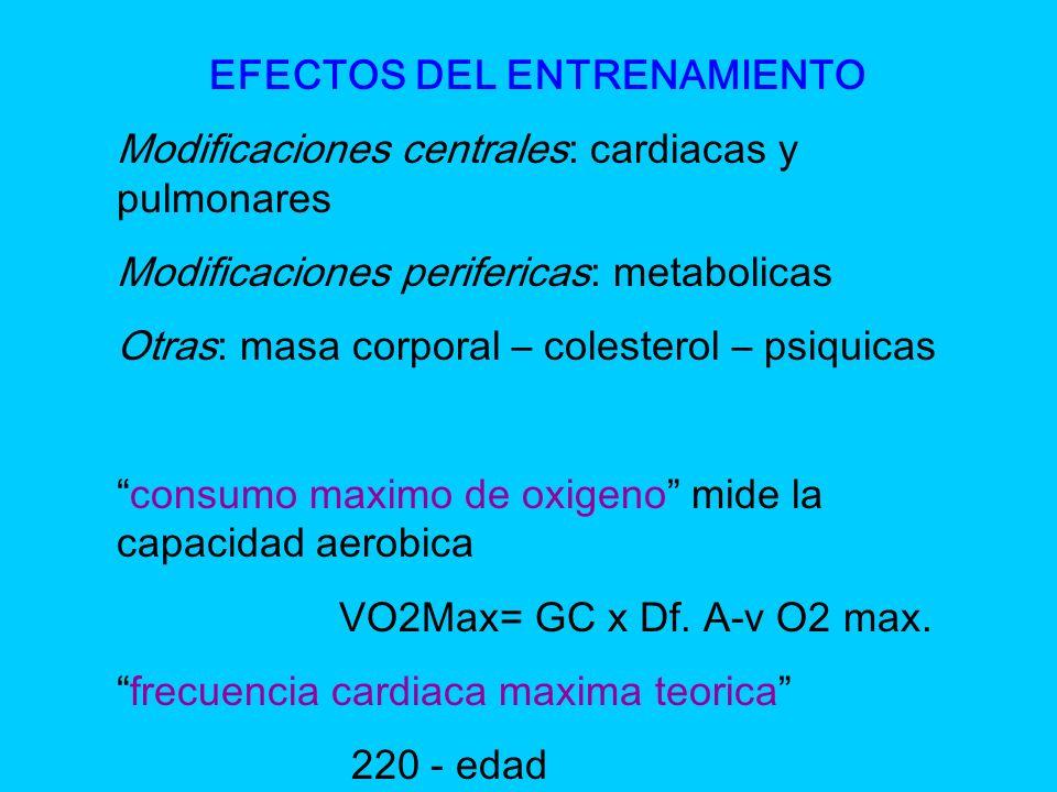 EFECTOS DEL ENTRENAMIENTO Modificaciones centrales: cardiacas y pulmonares Modificaciones perifericas: metabolicas Otras: masa corporal – colesterol –
