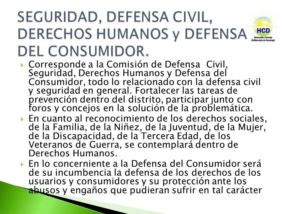 Corresponde a la Comisión de Defensa Civil, Seguridad, Derechos Humanos y Defensa del Consumidor, todo lo relacionado con la defensa civil y seguridad