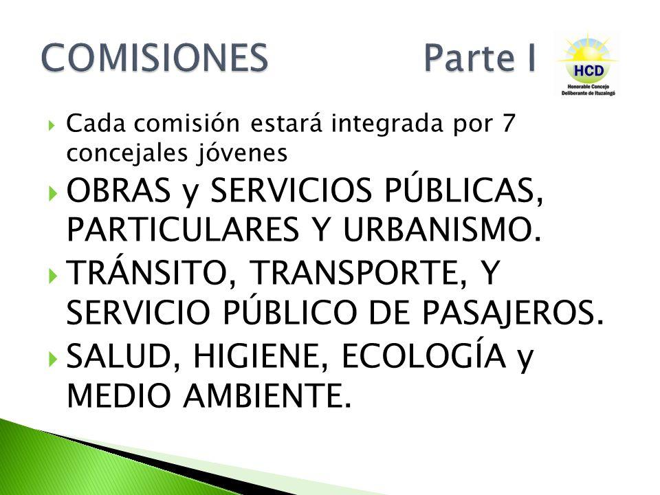 Cada comisión estará integrada por 7 concejales jóvenes OBRAS y SERVICIOS PÚBLICAS, PARTICULARES Y URBANISMO. TRÁNSITO, TRANSPORTE, Y SERVICIO PÚBLICO
