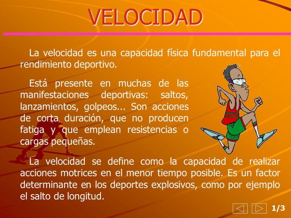 VELOCIDAD 1/3 La velocidad es una capacidad física fundamental para el rendimiento deportivo. Está presente en muchas de las manifestaciones deportiva