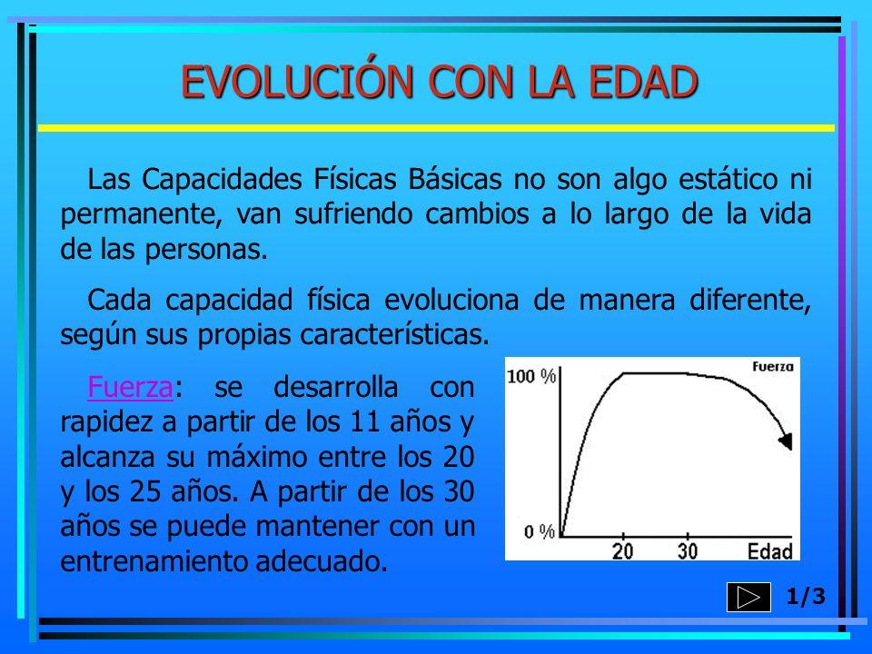 EVOLUCIÓN CON LA EDAD 1/3 Fuerza: se desarrolla con rapidez a partir de los 11 años y alcanza su máximo entre los 20 y los 25 años. A partir de los 30