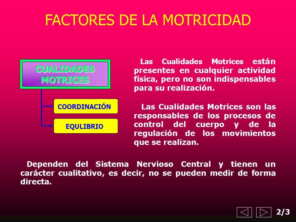 FACTORES DE LA MOTRICIDAD Las Cualidades Motrices están presentes en cualquier actividad física, pero no son indispensables para su realización. CUALI
