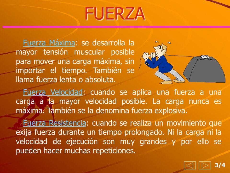 4/4 FUERZA Manifestaciones de la fuerza TipoCargaEjemplo Fuerza Máxima 70-90 % Fuerza Velocidad 50-60 % Fuerza Resistencia 30-50 %