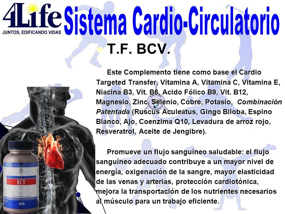T.F. BCV. T.F. BCV. Este Complemento tiene como base el Cardio Targeted Transfer, Vitamina A, Vitamina C, Vitamina E, Niacina B3, Vit. B6, Acido Fólic