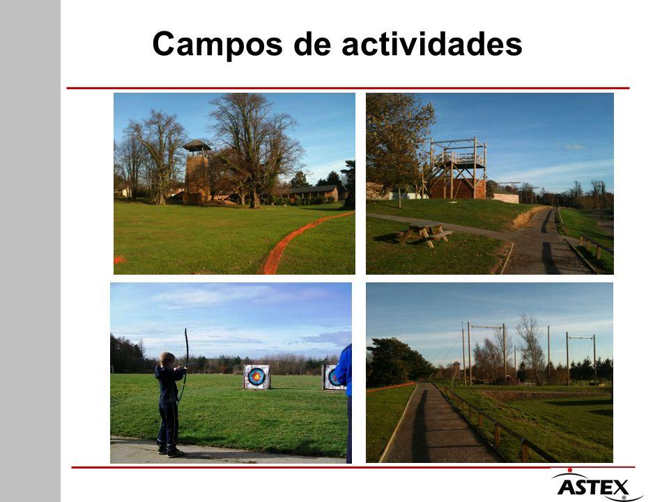Campos de actividades