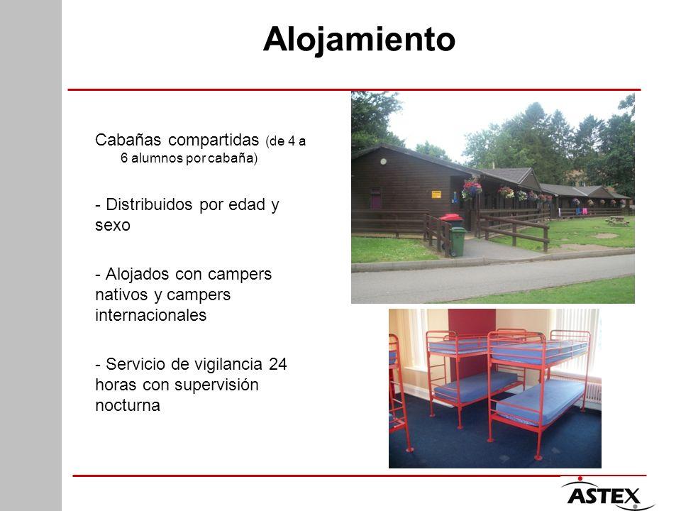 Alojamiento Cabañas compartidas (de 4 a 6 alumnos por cabaña) - Distribuidos por edad y sexo - Alojados con campers nativos y campers internacionales
