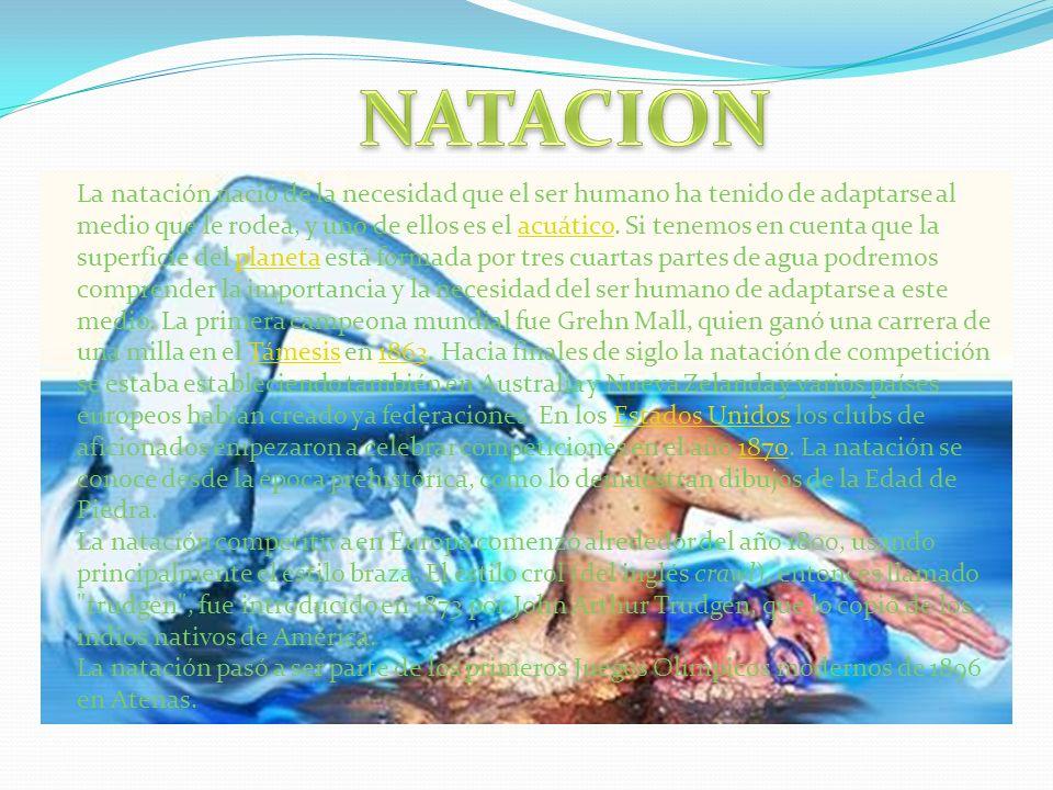 La natación nació de la necesidad que el ser humano ha tenido de adaptarse al medio que le rodea, y uno de ellos es el acuático. Si tenemos en cuenta