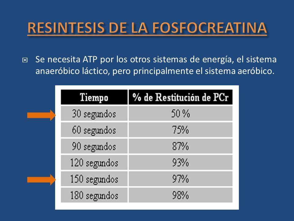 Se necesita ATP por los otros sistemas de energía, el sistema anaeróbico láctico, pero principalmente el sistema aeróbico.