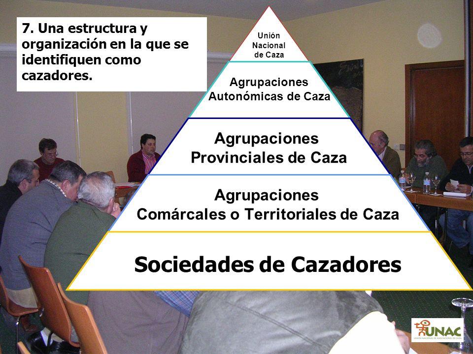 7. Una estructura y organización en la que se identifiquen como cazadores. Unión Nacional de Caza Agrupaciones Autonómicas de Caza Agrupaciones Provin