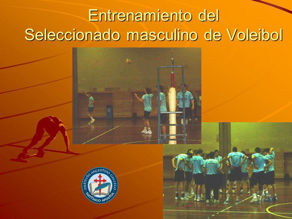 Instalaciones cubiertas Gimnasio Carl Diem, apto para la práctica de distintas disciplinas: basquet, voley, handbol, badminton, etc.