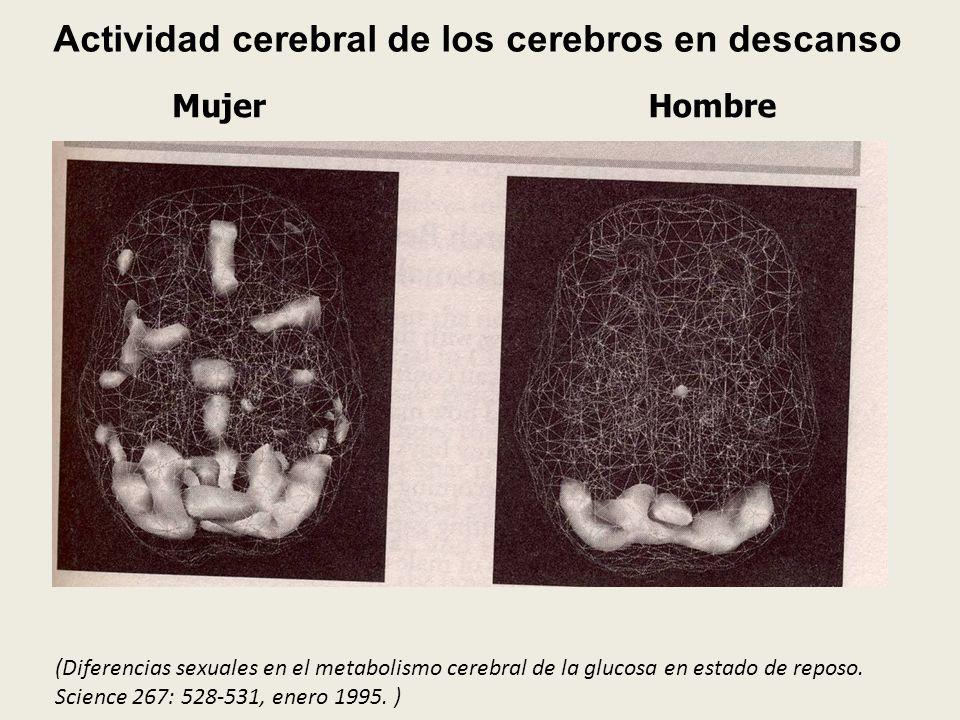 Actividad cerebral de los cerebros en descanso MujerHombre (Diferencias sexuales en el metabolismo cerebral de la glucosa en estado de reposo. Science