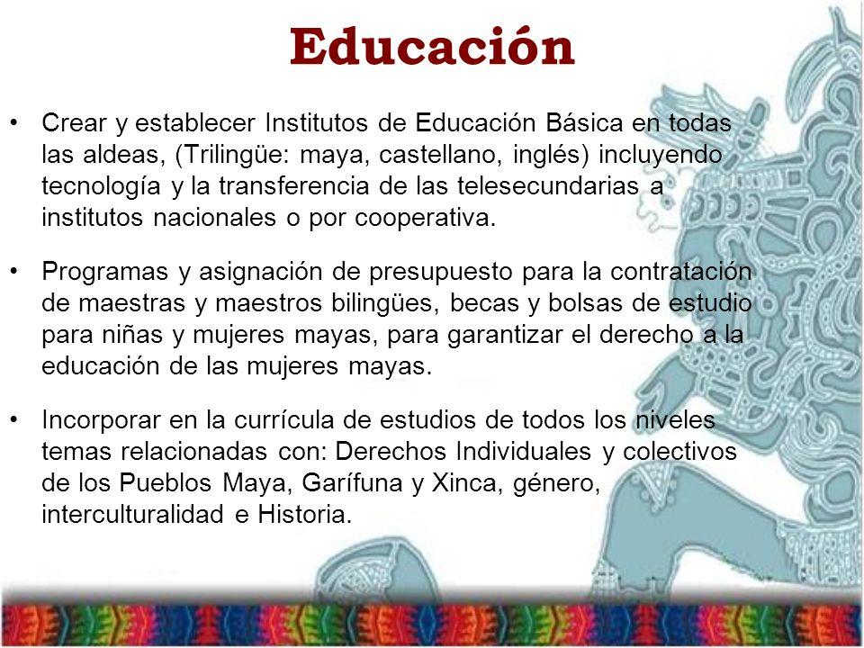 Educación Crear y establecer Institutos de Educación Básica en todas las aldeas, (Trilingüe: maya, castellano, inglés) incluyendo tecnología y la transferencia de las telesecundarias a institutos nacionales o por cooperativa.