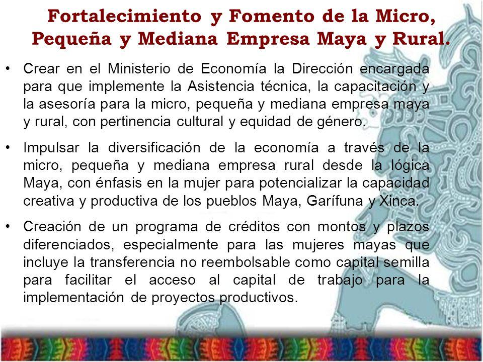 Fortalecimiento y Fomento de la Micro, Pequeña y Mediana Empresa Maya y Rural. Crear en el Ministerio de Economía la Dirección encargada para que impl