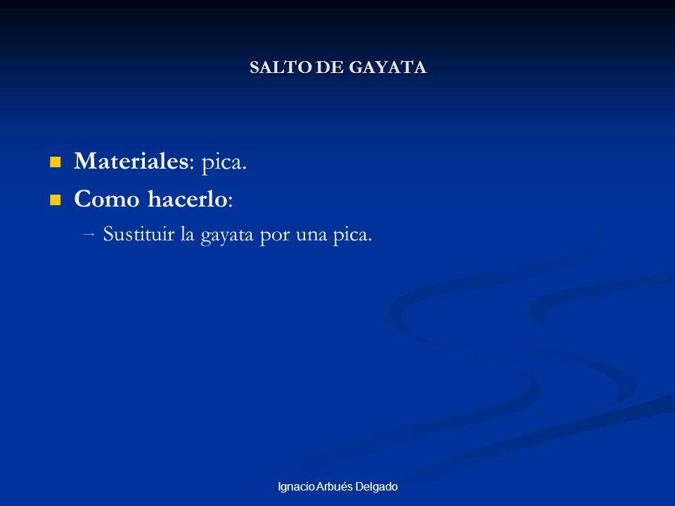 Ignacio Arbués Delgado SALTO DE GAYATA Materiales: pica. Como hacerlo: Sustituir la gayata por una pica.