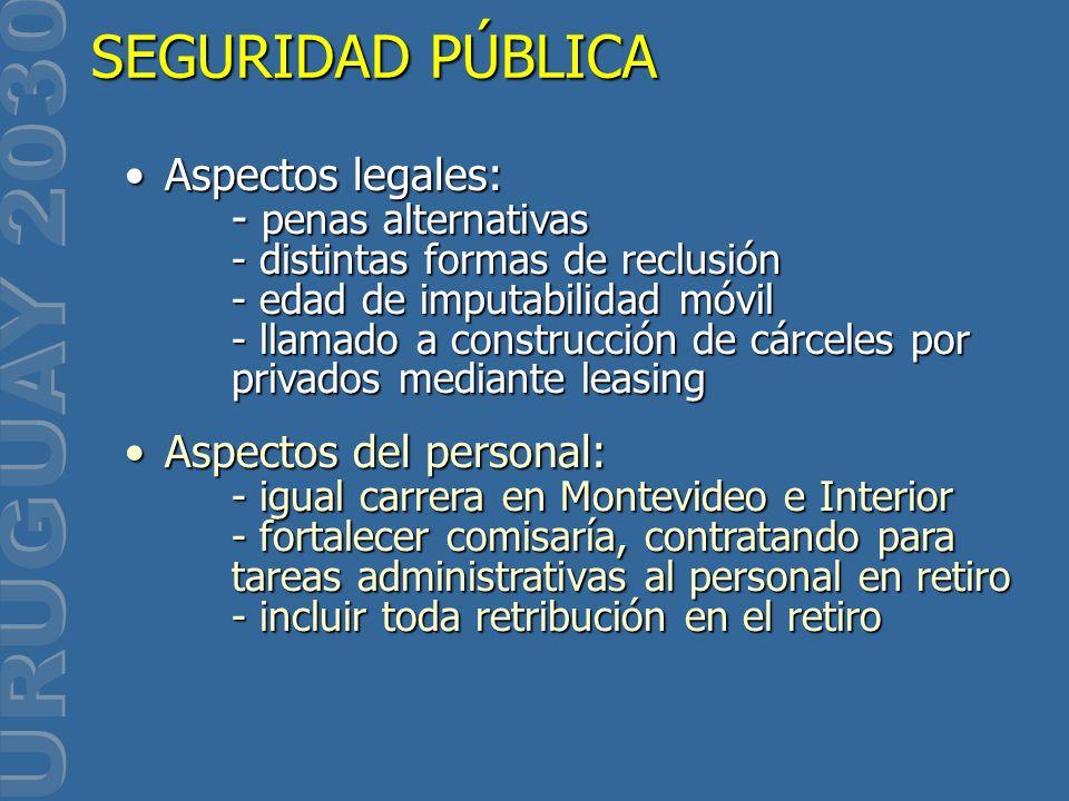 SEGURIDAD PÚBLICA Aspectos legales: - penas alternativas - distintas formas de reclusión - edad de imputabilidad móvil - llamado a construcción de cár