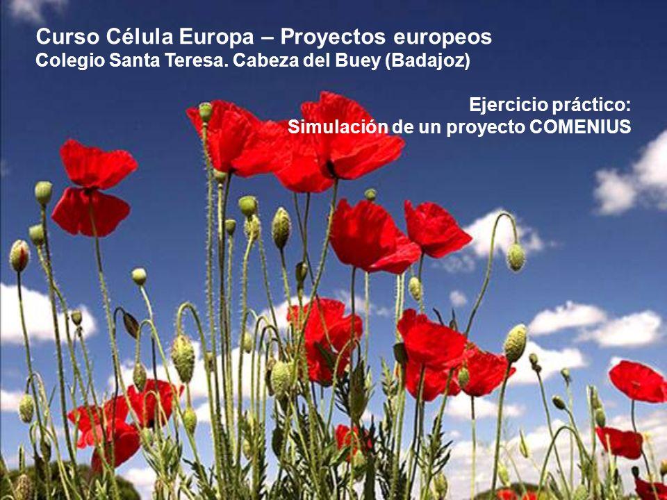 Curso Célula Europa – Proyectos europeos Colegio Santa Teresa.