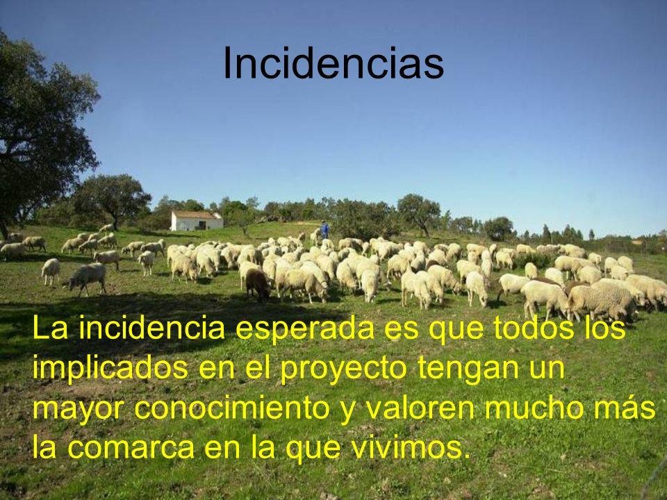 Incidencias La incidencia esperada es que todos los implicados en el proyecto tengan un mayor conocimiento y valoren mucho más la comarca en la que vivimos.