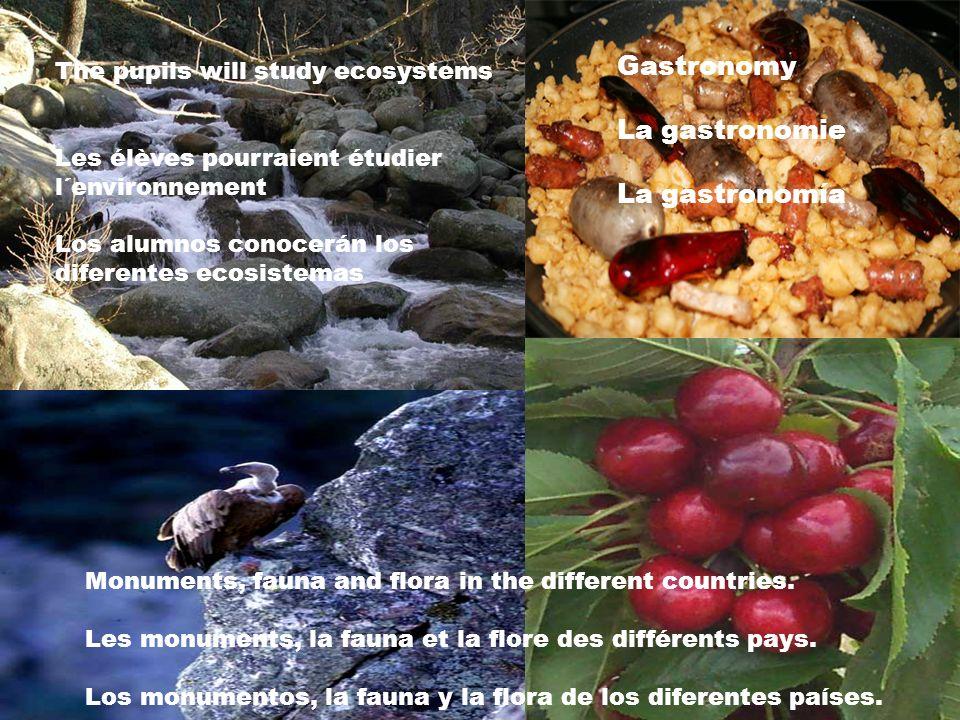 The pupils will study ecosystems Les élèves pourraient étudier l´environnement Los alumnos conocerán los diferentes ecosistemas Gastronomy La gastrono