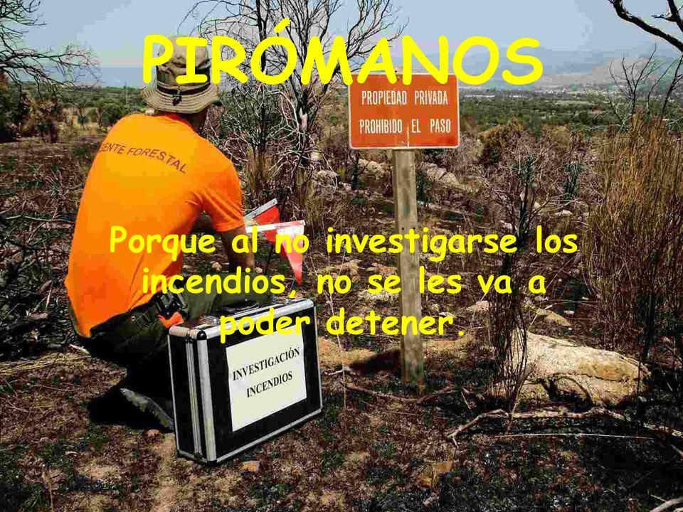 PIRÓMANOS Porque al no investigarse los incendios, no se les va a poder detener.