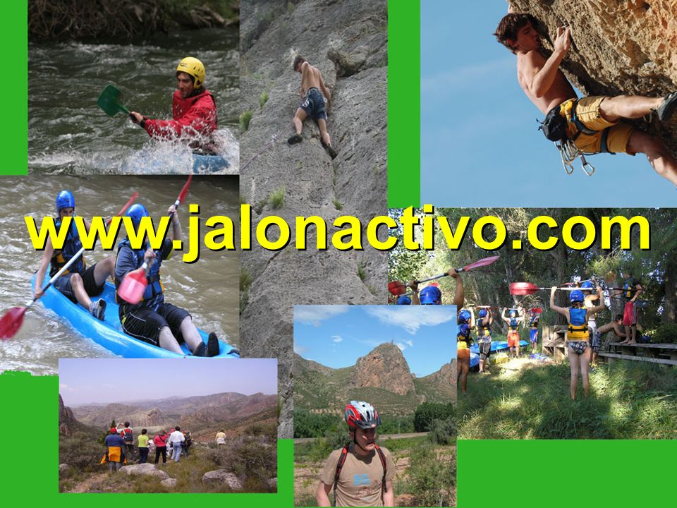 www.jalonactivo.com