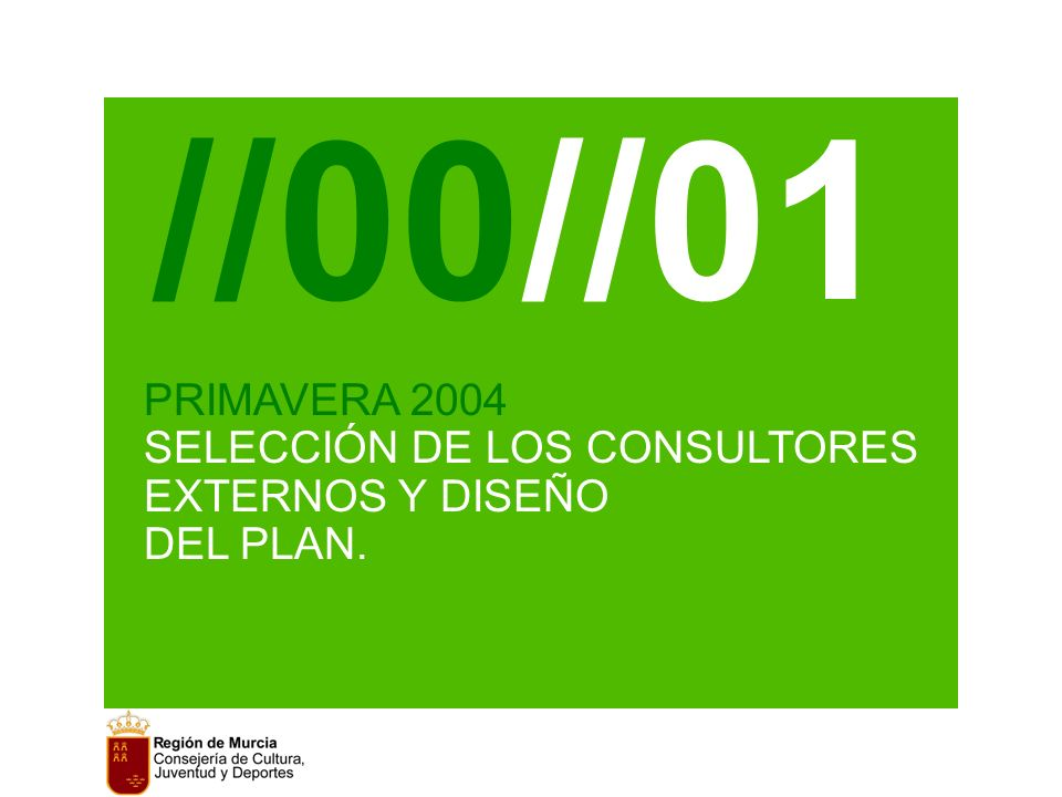PRIMAVERA 2004 SELECCIÓN DE LOS CONSULTORES EXTERNOS Y DISEÑO DEL PLAN. //00//01