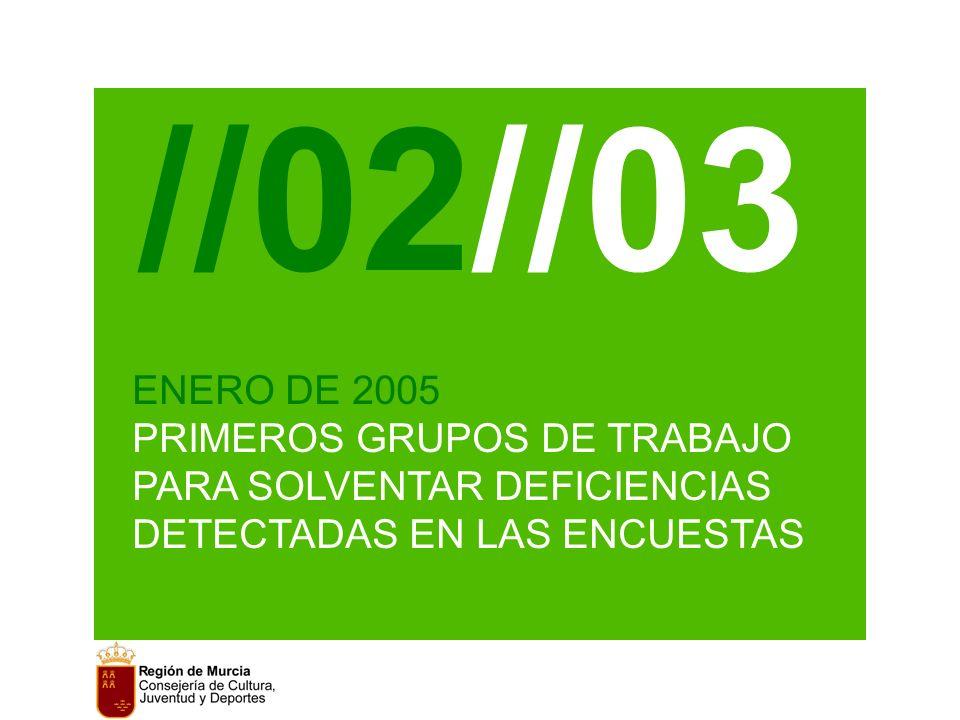 //02//03 ENERO DE 2005 PRIMEROS GRUPOS DE TRABAJO PARA SOLVENTAR DEFICIENCIAS DETECTADAS EN LAS ENCUESTAS