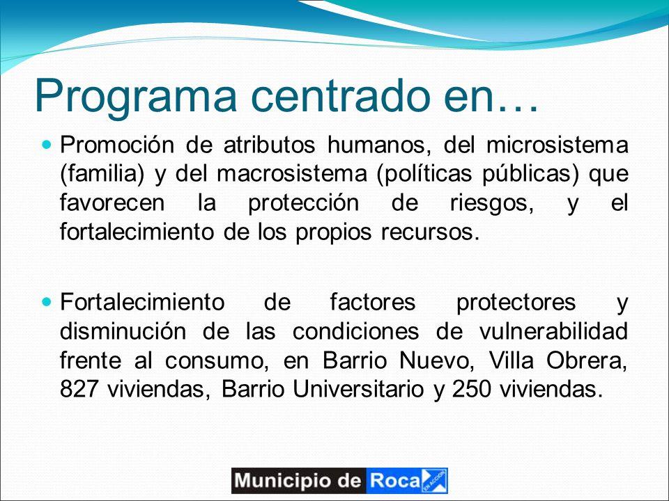 Programa centrado en… Promoción de atributos humanos, del microsistema (familia) y del macrosistema (políticas públicas) que favorecen la protección de riesgos, y el fortalecimiento de los propios recursos.
