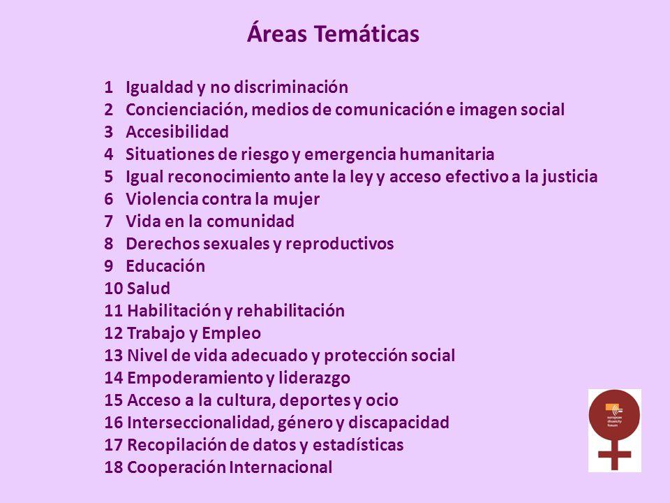 Áreas Temáticas 1 Igualdad y no discriminación 2 Concienciación, medios de comunicación e imagen social 3 Accesibilidad 4 Situationes de riesgo y emer
