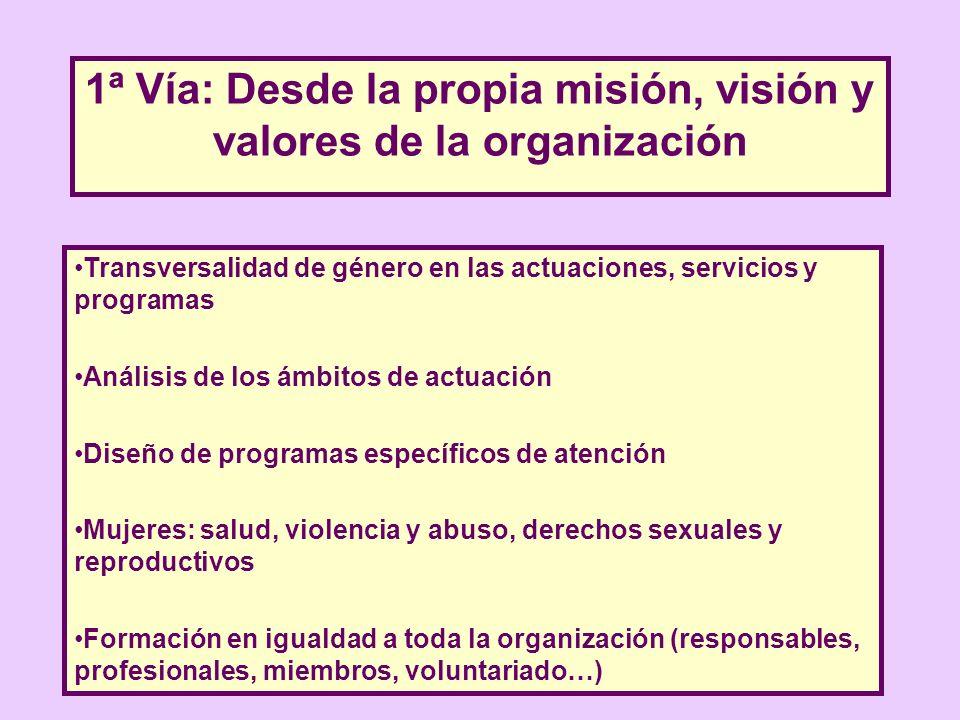 1ª Vía: Desde la propia misión, visión y valores de la organización Transversalidad de género en las actuaciones, servicios y programas Análisis de lo
