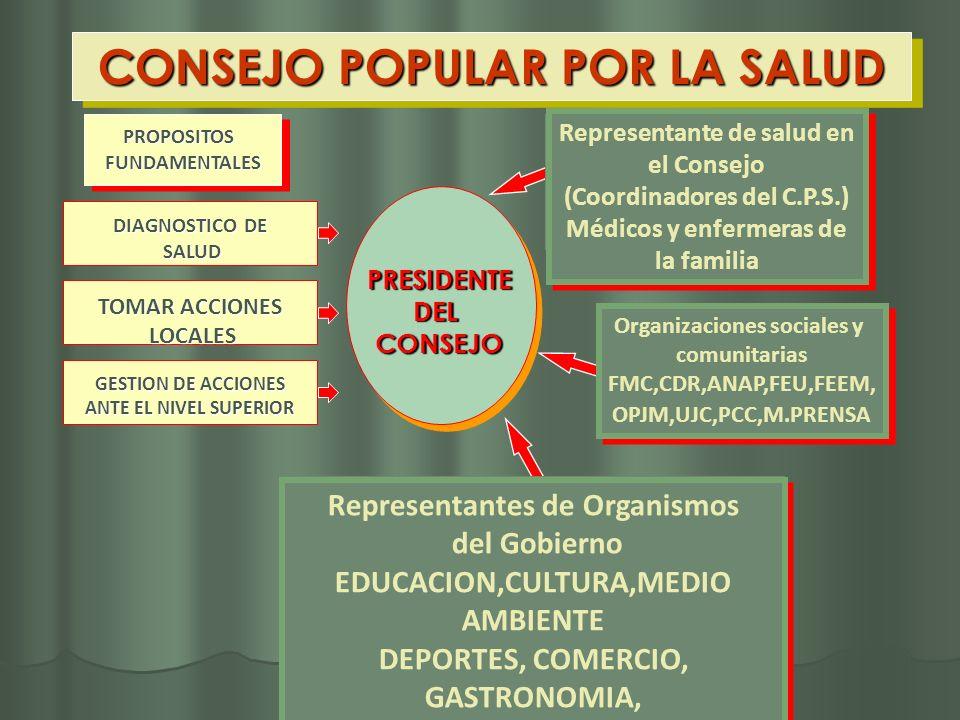 CONSEJO POPULAR POR LA SALUD PRESIDENTEDELCONSEJO Representante de salud en el Consejo (Coordinadores del C.P.S.) Médicos y enfermeras de la familia R
