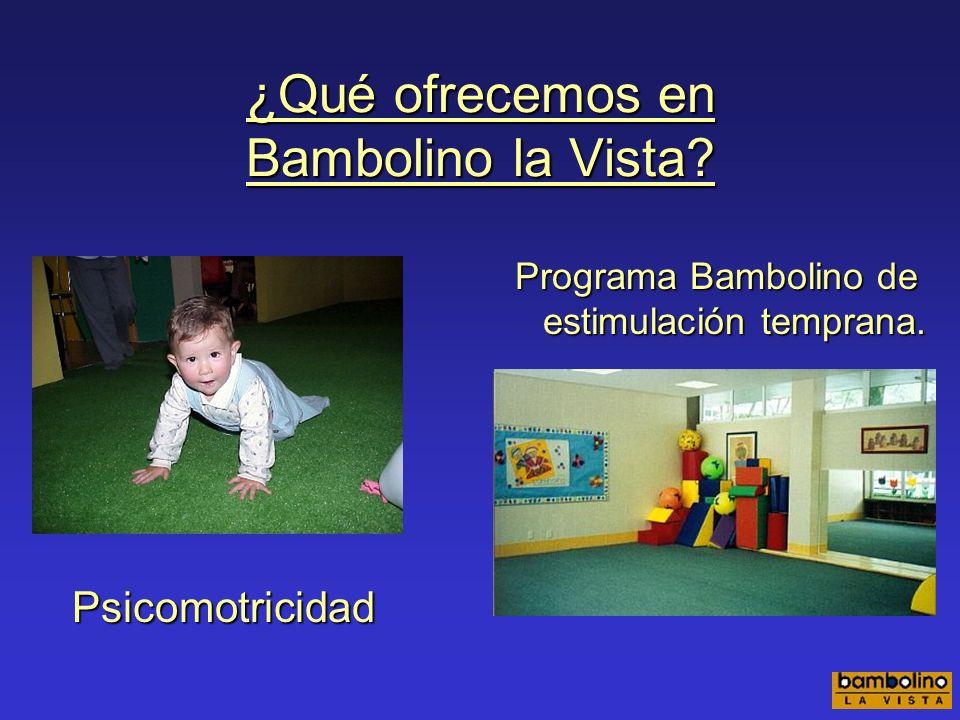 ¿Qué ofrecemos en Bambolino la Vista? Inglés Computación