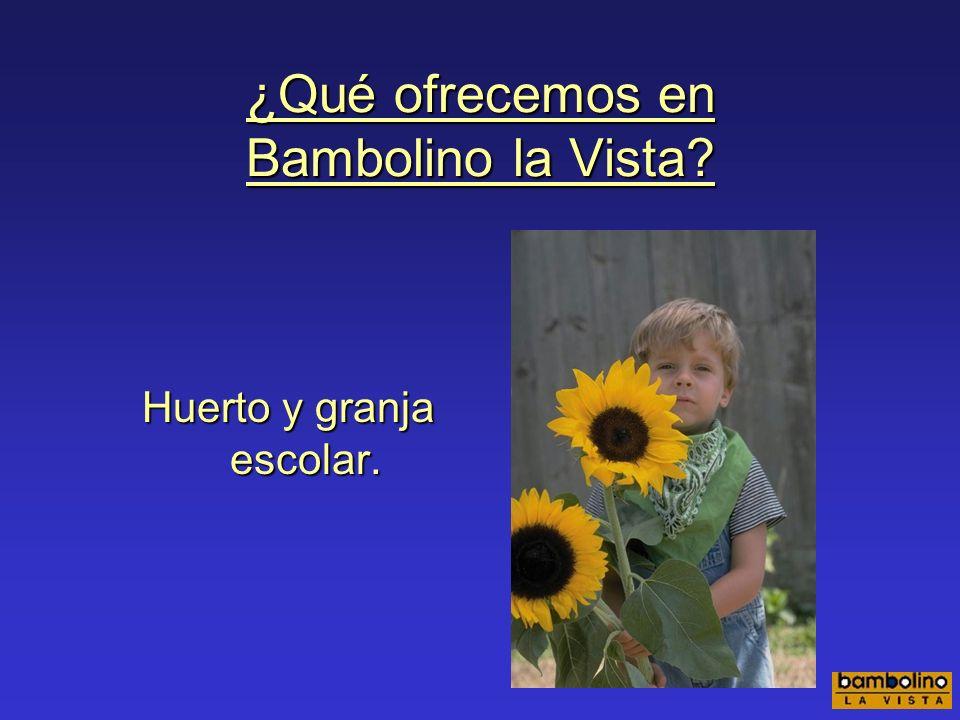 ¿Qué ofrecemos en Bambolino la Vista? Actividades especiales: pintura, modelado, creatividad Taller de lectura.