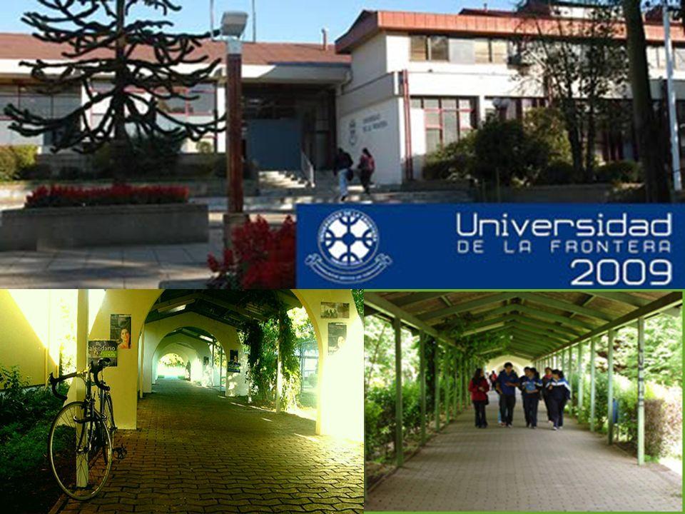 Facultad de Medicina Las carreras de la salud comienzan a funcionar en Temuco en 1963 con la creación de las carreras de Enfermería y Obstetricia y Puericultura.