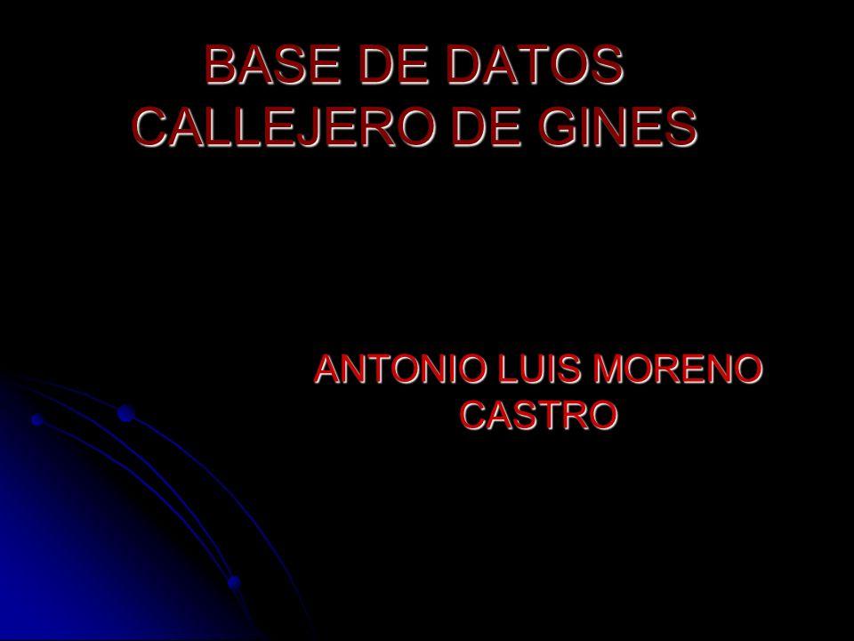 BASE DE DATOS CALLEJERO DE GINES ANTONIO LUIS MORENO CASTRO