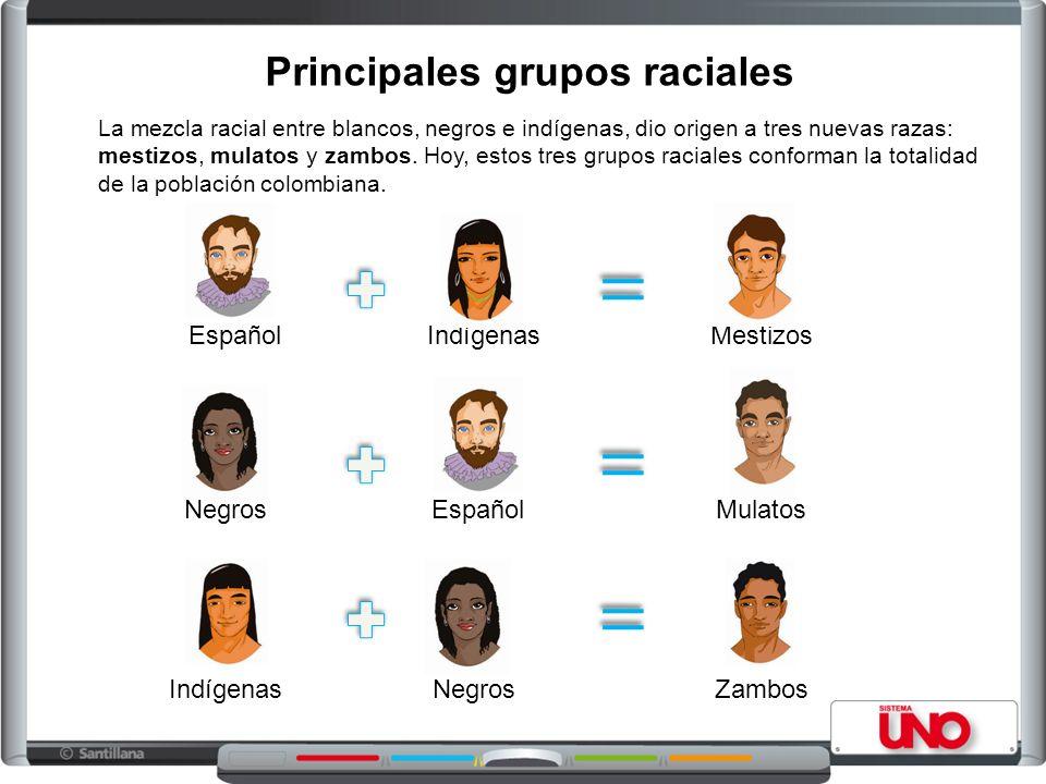 Principales grupos raciales La mezcla racial entre blancos, negros e indígenas, dio origen a tres nuevas razas: mestizos, mulatos y zambos.